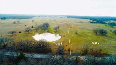 Wise County Residential Lots & Land For Sale: Tr. 2 Echo Road
