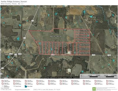 Wise County Residential Lots & Land For Sale: Tr. 1 Echo Road