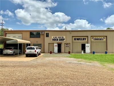 Upshur County Commercial For Sale: 3418 N Us Highway 271