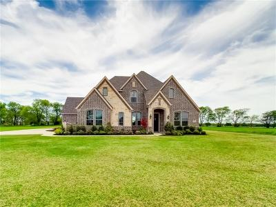 McKinney Single Family Home For Sale: 4282 Lake Shore Drive