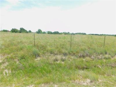 Weatherford Farm & Ranch For Sale: 121 Heather Ridge Court
