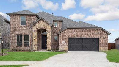 Little Elm Single Family Home For Sale: 14016 Cortes De Pallas Drive