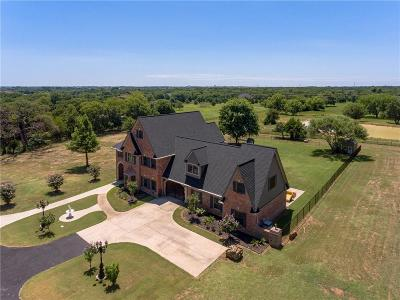 Denton County Single Family Home For Sale: 848 Orchid Hill Lane