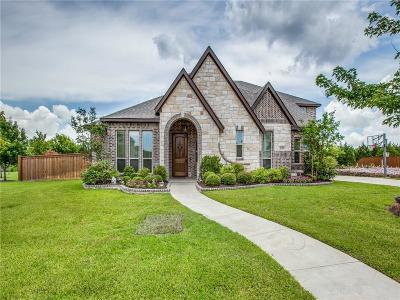 Grand Prairie Single Family Home Active Kick Out: 2707 Neblina Court