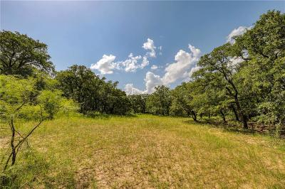 Parker County, Tarrant County, Wise County Residential Lots & Land For Sale: Tbd-2 Pr 3496