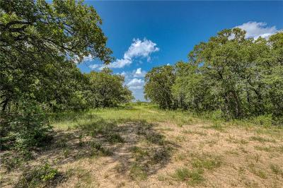 Parker County, Tarrant County, Wise County Residential Lots & Land For Sale: Tbd-3 Pr 3496