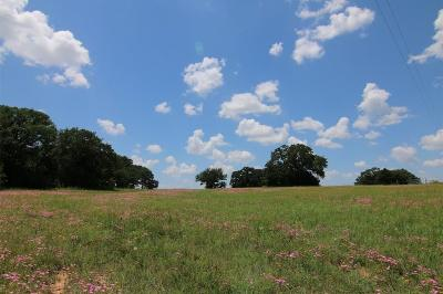 Wise County Farm & Ranch For Sale: Tbd County Road 2195