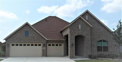 Denton Single Family Home For Sale: 12112 Willet Way