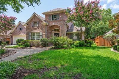 Denton County Single Family Home For Sale: 4633 Skyline Drive