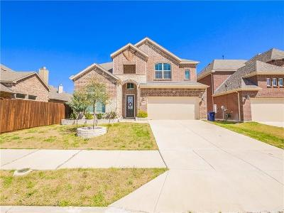 Little Elm Single Family Home For Sale: 1051 W Horsemint Drive