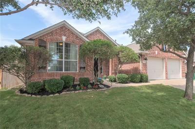 Denton Single Family Home For Sale: 6008 Parkplace Drive