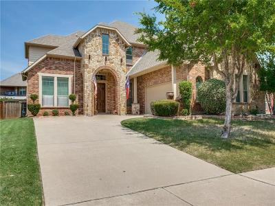 Grand Prairie TX Single Family Home For Sale: $410,000
