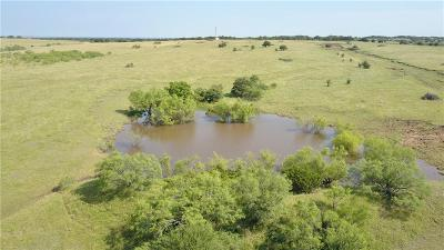 Parker County Farm & Ranch For Sale: North Whitt Road