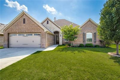 Parker County, Tarrant County, Hood County, Wise County Single Family Home For Sale: 3235 Boat Landing Trail