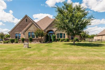 Dallas County, Denton County, Collin County, Cooke County, Grayson County, Jack County, Johnson County, Palo Pinto County, Parker County, Tarrant County, Wise County Single Family Home For Sale: 12001 Wild Bill Court