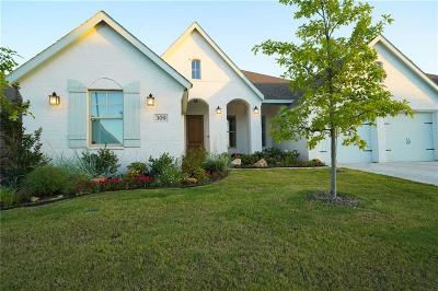 Benbrook Single Family Home For Sale: 309 Bluffside Trail