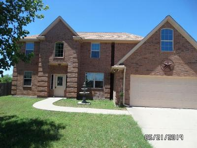 Stephenville Single Family Home For Sale: 1240 Elk Ridge Drive