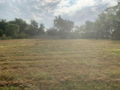 Hico Residential Lots & Land For Sale: 927 N Pecan Street