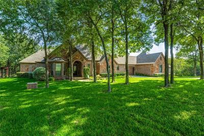 Parker County Single Family Home For Sale: 174 Tres Vistas Court