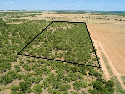 Young County Farm & Ranch For Sale: Self Road