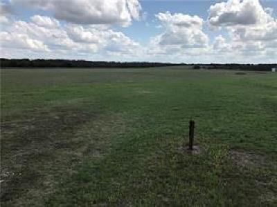 Weatherford Farm & Ranch For Sale: 4603 E Lampkin Road