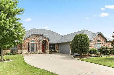 Arlington Single Family Home For Sale: 3901 Bridle Oaks Drive