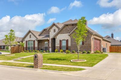 Waxahachie Single Family Home For Sale: 521 Hay Meadow Drive