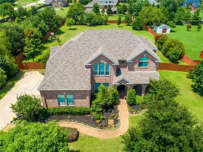 Dallas County, Denton County, Collin County, Cooke County, Grayson County, Jack County, Johnson County, Palo Pinto County, Parker County, Tarrant County, Wise County Single Family Home For Sale: 1204 Del Mar Drive