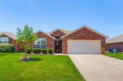 Little Elm Single Family Home For Sale: 2809 Watercress Drive