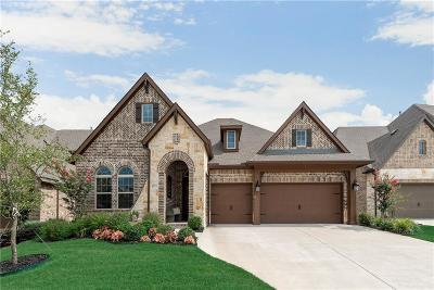 McKinney Single Family Home For Sale: 6521 Rabbit Hill Road