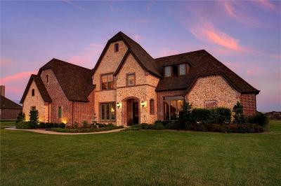 Single Family Home For Sale: 13401 Escalara Lane