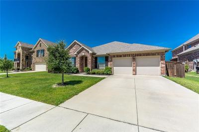 Dallas County Single Family Home For Sale: 3932 Heritage Park Drive