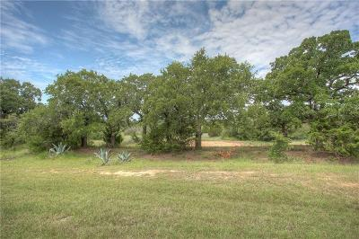 Parker County, Tarrant County, Wise County Residential Lots & Land For Sale: 128 True Grit Court