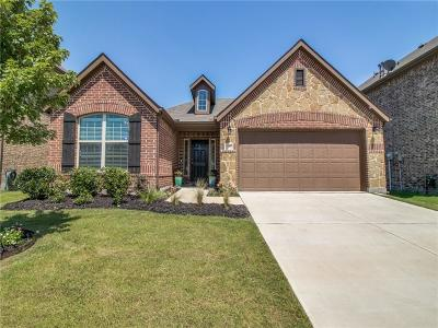 Little Elm Single Family Home For Sale: 709 Bird Creek Drive