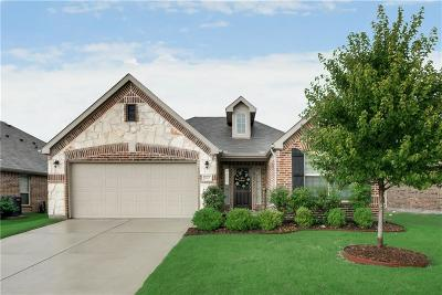 Little Elm Single Family Home For Sale: 2612 Sun Creek Drive