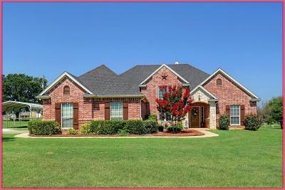 Parker County Single Family Home For Sale: 1252 Dobbs Trail