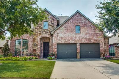 Little Elm Single Family Home For Sale: 2437 Northwind Drive