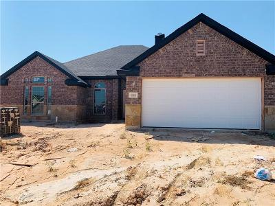 Parker County Single Family Home For Sale: 1500 Town Creek Circle