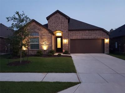 Little Elm Single Family Home For Sale: 1024 Lake Sierra Way
