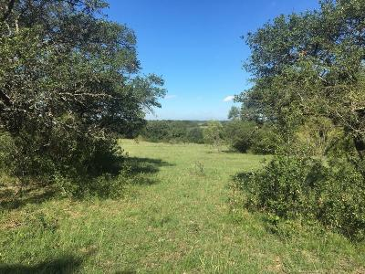 Comanche County Farm & Ranch For Sale: Highway 1689