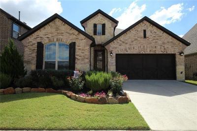 Little Elm Single Family Home For Sale: 4304 Canopy Street