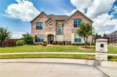 Prosper Single Family Home For Sale: 521 Logans Way Drive