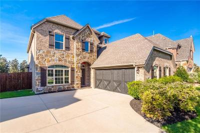 Frisco Single Family Home For Sale: 13053 Scotch Pine Drive