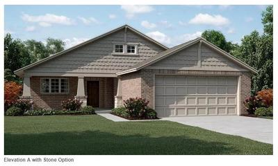 Forney Single Family Home For Sale: 9065 Switchgrass Lane