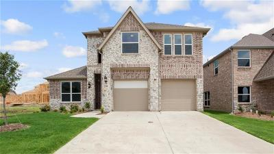 Little Elm Single Family Home For Sale: 1204 Nannyberry Drive