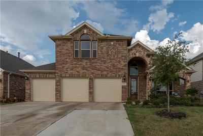 Denton Single Family Home For Sale: 3104 Lakeview Boulevard
