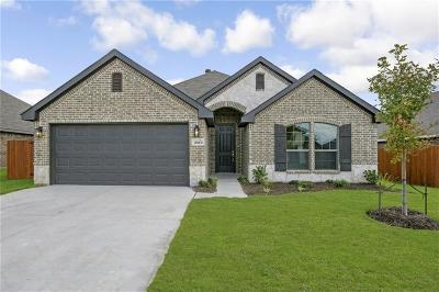 Parker County Single Family Home For Sale: 2513 Silver Fox Trail