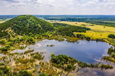 Palo Pinto County Farm & Ranch For Sale: Tbd Hwy 16