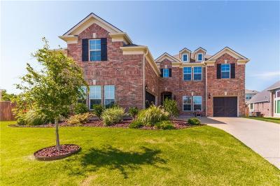 Allen Single Family Home For Sale: 945 Herschell Street