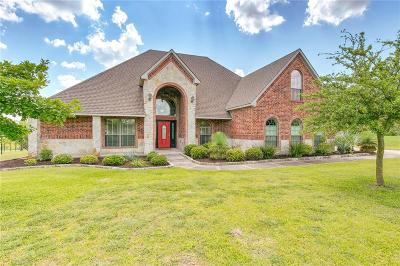 Parker County Single Family Home For Sale: 389 Scenic View Drive